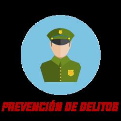 PREVENCION DE DELITOS